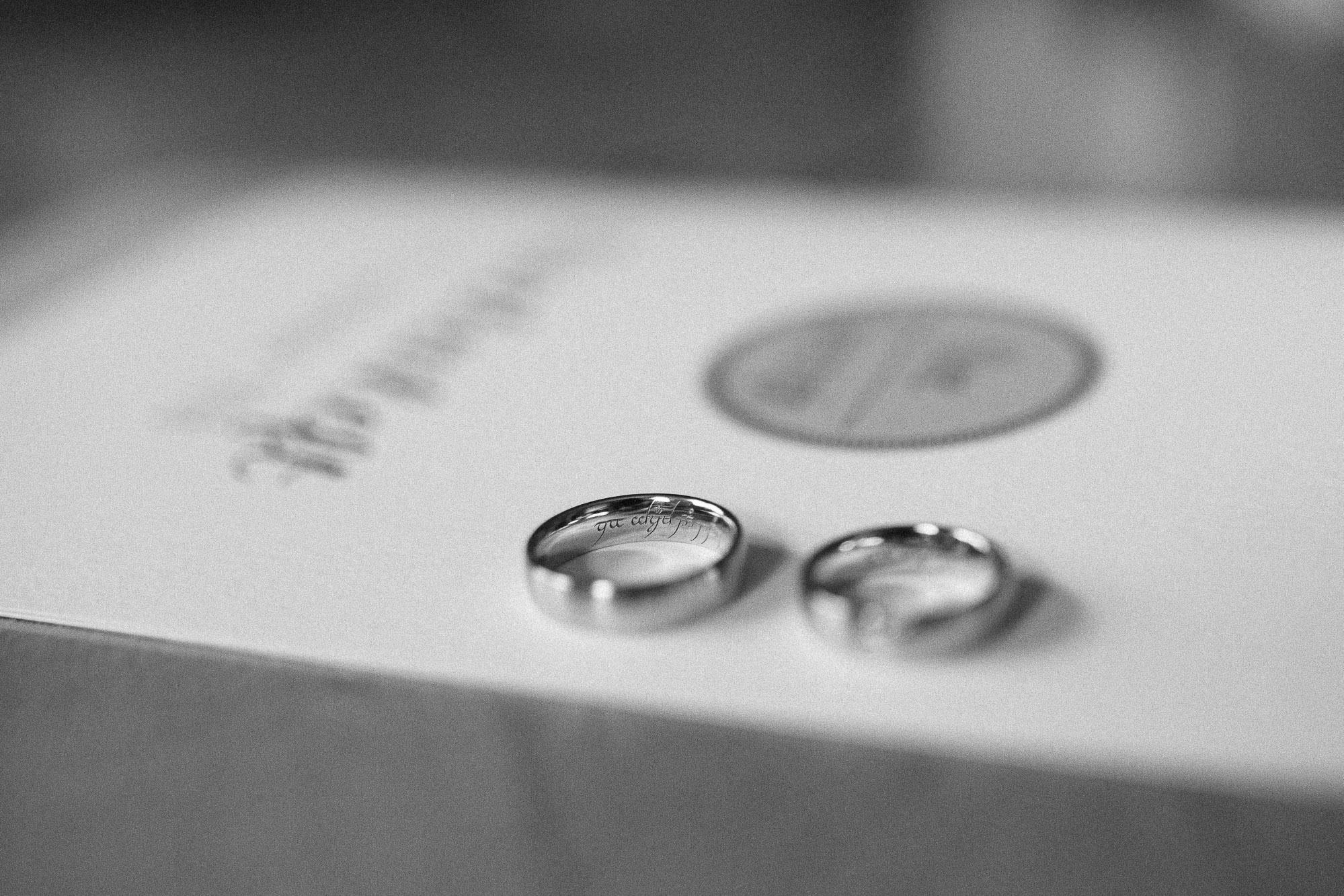 greenery-wedding-hochzeit-prielhof-sukkulenten-scheyern-lauraelenaphotography-009