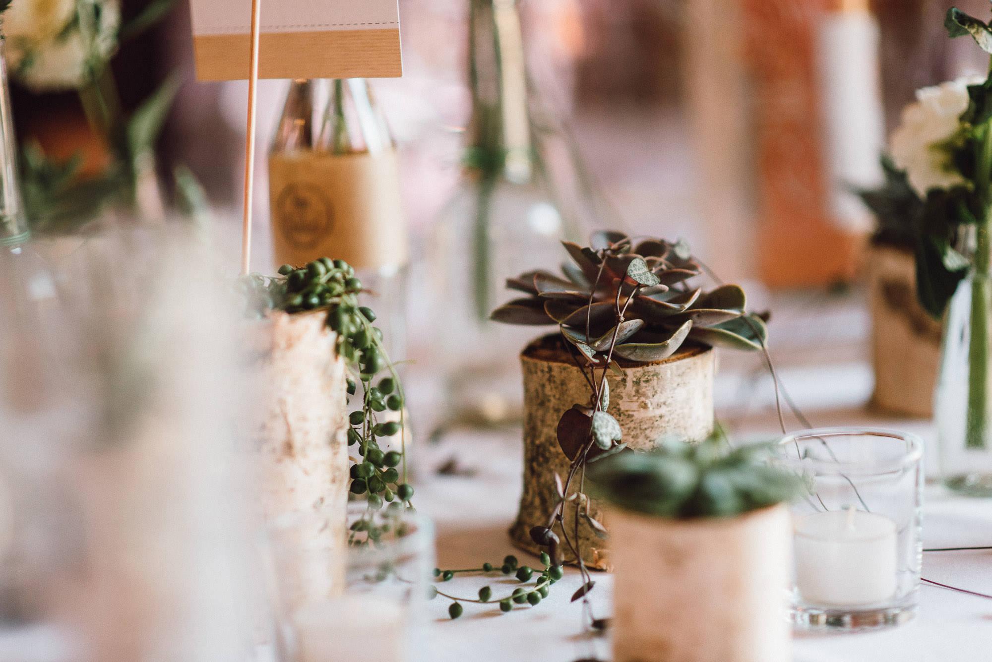 greenery-wedding-hochzeit-prielhof-sukkulenten-scheyern-lauraelenaphotography-099